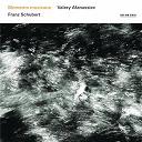 Franz Schubert / Valery Afanassiev - Franz schubert: moments musicaux