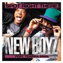 New Boyz - Spot right there (feat. teairra mari)