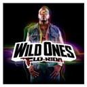 Flo Rida - Wild ones