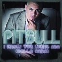 Pitbull - I know you want me (calle ocho)- more english radio edit
