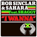 Bob Sinclar / Sahara - I wanna