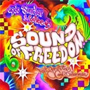 Bob Sinclar / Cutee B. - Sound of freedom