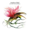 Andrew Bird - Fitz and the dizzy spells