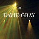 David Gray - Alibi (uk cd)