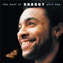 Shaggy - mr lover lover (the best of part 1)