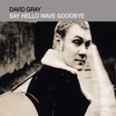 David Gray - Say hello, wave goodbye