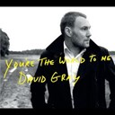 David Gray - You're the world to me (itunes dmd)