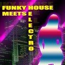 Creeperfunk / David Khristalyne / Flowshakerz / Hot Pool / Jason Rivas - Funky house meets electro