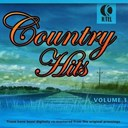 Dolly Parton / Eddy Arnold / George Jones / Hank Snow / Hank Williams / Jim Reeves / Johnny Cash / Little Jimmy Dickens / Marty Robbins / Merle Travis / Pierce Webb / Ray Price / Roy Acuff / Sonny James / Waylon Jennings / Willie Nelson - 20 great country hits - vol. 3