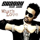 Shaggy - What's love