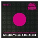 Andre Vicenzzo / Dj Nano / T. Tommy - Surrender
