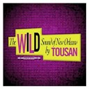 Allen Toussaint - The wild sound of new orleans by tousan (original album - digitally remastered)