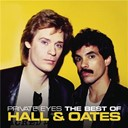 Daryl Hall / John Oates - Private eyes: the best of hall & oates