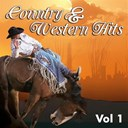 Chet Atkins / Cowboy Copas / Eddy Arnold / Ferlin Husky / Hank Snow / Hardrock Gunter / Jim Reeves / Johnny Horton / Little Jimmy Dickens / Marty Robbins / Merle Travis / Patsy Montana / Ray Price / Red Foley / Roy Acuff / Sheb Wooley - Country & western, vol. 1