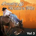 Don Gibson / Eddy Arnold / Ernest Tubb / Hank Snow / Hank Williams / Jim Reeves / Johnny Horton / Lefty Frizzell / Little Jimmy Dickens / Marty Robbins / Merle Travis / Patsy Montana / Ray Price / Red Foley / Roy Acuff / Tex Williams - Country & western, vol. 3