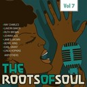 Ben E. King / Bobby Day / Bobby Marchan / Clyde Mcphatter / Earl Grant / Jackie Wilson / James Brown / Johnny Ace / Lavern Baker / Linda Lee Hopkins / Ray Charles / Rudy Ray Moore / Ruth Brown / Sam Cooke / Smiley Lewis / Solomon Burke - Roots of soul, vol. 7