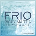 Ricky Martin - Frío (wally lópez remix)
