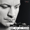 David Pfeffer - Riot in my veins