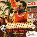Shaggy - Feel the rush