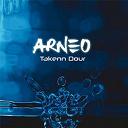 Arneo - Takenn dour