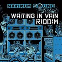 Frenchie / General Degree / Richie Stevens / The Dub Organiser - Waiting in vain riddim