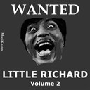 Little Richard - Wanted little richard (vol. 2)