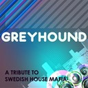 A Tributer - Greyhound (a tribute to swedish house mafia)