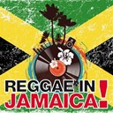 Al Pholllip / Andy Omocaro / B. Scottley / Bob Marley / Disco Fever / Gregory Isaacs / High School Music Band / Jack Radies / John Marty / Latin Band / Les Boys / Likemba / Lorraine / Nassara / Papa Winnie / Ragga Family / Sharon / The Flashback / Wayne Wonder / Yourp - Reggae in jamaica! (30 dancehall reggae rastafari selected tracks)