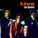 The Shadows - Live