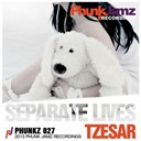 Tzesar - Separate lives