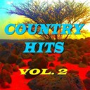 Doug Stone / Exile / Holly Dunn / Janie Fricke / Johnny Paycheck / Juice Newton / Lacy J. Dalton / Lynn Anderson / Merle Haggard / Mickey Gilley / Moe Bandy / Patsy Cline / Restless Heart / T G Sheppard / T. Graham Brown / Tania Tucker / Willie Nelson - Country hits, vol. 2