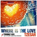 Tzesar - Where is the love