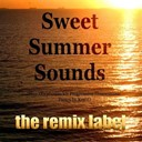 2ls2dance / Back2basics / Christian Paduraru / Coolerika / Dubacid / Funkocrat / Growaware / Heathous / Ketaneo / Paduraru / Vibrant - Sweet summer sounds (ibiza deephouse vs progressive housemusic tunes in key-g)