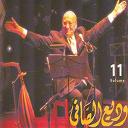Wadi El-Safi - Wadi el safi, vol. 11 (live)