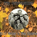 Bill Haley - The outstanding bill haley & the comets