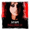 Alice Cooper - Painting a Picture (Live)