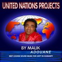 Malik Adouane - United  nations projects