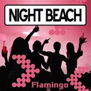 Night Beach - Flamingo