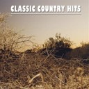 Charlie Walker / Don Gibson / Faron Young / Jim Reeves / Jimmie Skinner / Johnny Cash / Johnny Horton / Kitty Wells / Ray Price / Roy Drusky / Skeeter Davis / Sonny James / Stonewall Jackson / The Browns / The Everly Brothers - Classic country, vol. 2