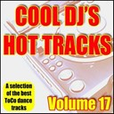 Aaron D / Breakstride Rockers / Carrousel People / Ck & Supreme Dream Team / D Code / Da Robsta / Dj Patjoo Com / Dj Polin / Dj Roy / Dj Tilo Hanssen / Nelson Montarello / Pearl Black - Cool dj's, hot tracks - vol. 17
