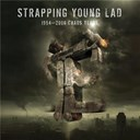 Strapping Young Lad - 1994 - 2006 chaos years (best of strapping young lad)
