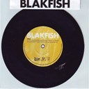 Blakfish - If the good lord had intended us to walk he wouldn't have invented roller-skates