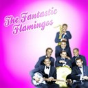 The Flamingos - The fantastic flamingos