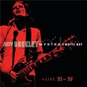 Jeff Buckley - Mystery white boy-live 95-96