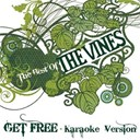 The Vines - Get free (karaoke version)