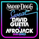 Snoop Dogg - Sweat (david guetta &amp; afrojack) (dubstep remix)