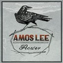 Amos Lee - Flower