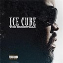 Ice Cube - The essentials