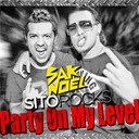 Sak Noel - Party on my level (radio edit)