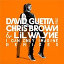 David Guetta - I can only imagine (feat.chris brown and lil wayne) (feat.chris brown and lil wayne)